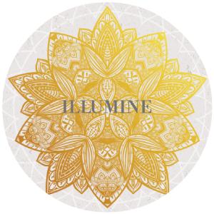 SS-Illumine-Image